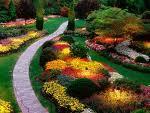 Producatori pamant de flori