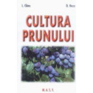 Culturi