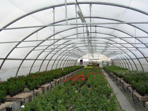 Solarii pentru flori legume