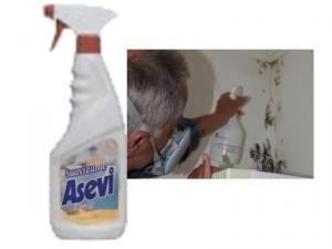 Mucegai pe pereti