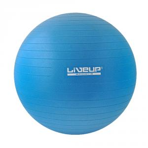 Balon Aerobic Ls 3222-55 Cm