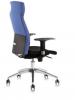 Scaun ergonomic 2310 class