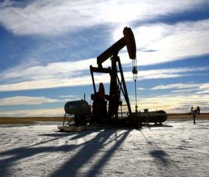 Servicii profesionale pentru achizitia gazelor naturale