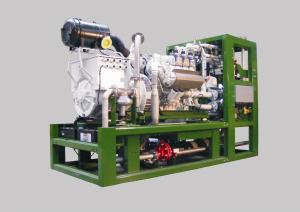 Motoare gaz natural