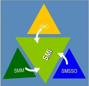 Proiectare sisteme management mediu