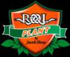 SC Rolplant J.H. SRL
