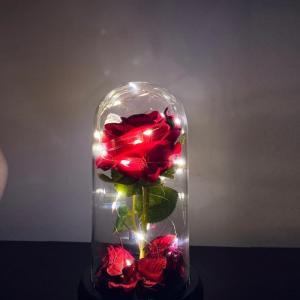 Trandafir Rose Amour
