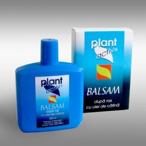 Balsam dupa ras