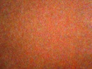 Mocheta Freeway orange