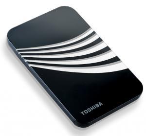 Portable 500gb