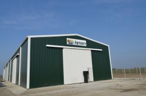 Agricultura cereale