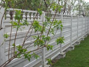 Placi de gard din beton