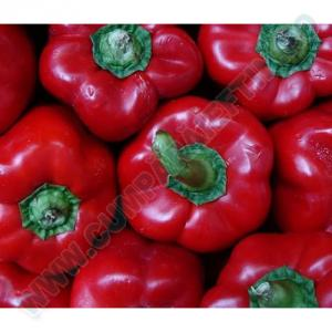 Ardei rosii 1 kg
