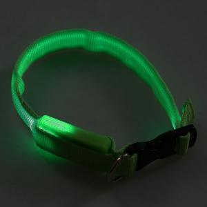 Zgarda cu LED verde pentru caine talie mica si medie
