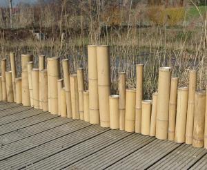 Borduri din bambus