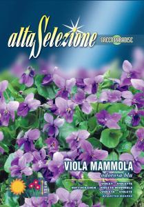 Violete - Parfumate albastre