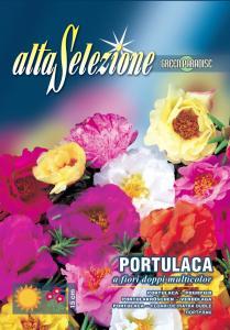 Flori de piatra - Multicolor