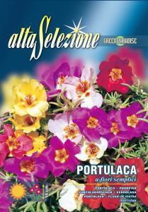 Flori de piatra simple - Multicolor