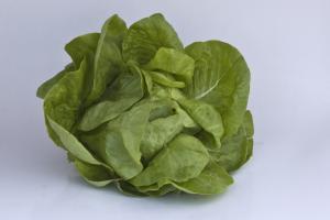 Salata de sera