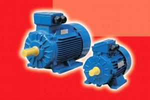 Motoare electrice 220 v