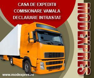 Transport intern