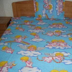 Lenjerii de pat copii Ingerasi albastra HSL1771