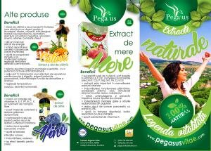 Producatori legume fructe