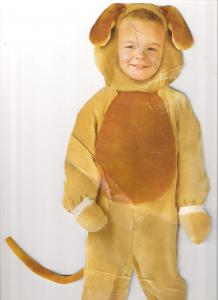 Costume animale copii