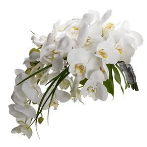 Buchet de mireasa cu orhidee