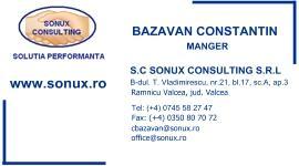 Management si consultanta