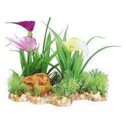 Decor plante