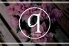 Logo SC  Floristiq Art International S.R.L.