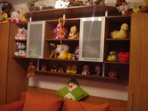 Camera copi