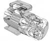 Motor electric cu rotor bobinat
