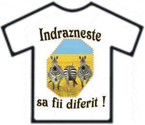 Imprimanta tricouri