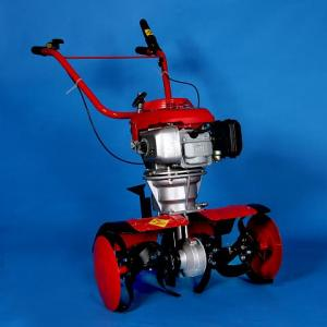 MotoSapa Marci Honda 6,5 CP