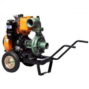 Motopompa ANTOR 4LD 820-LS4 ELECTRIC