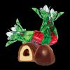 Struguri în ciocolatã