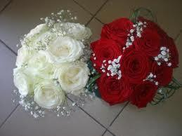 Trandafiri rosi