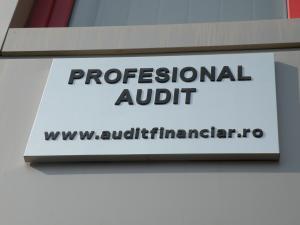 Expertize contabile