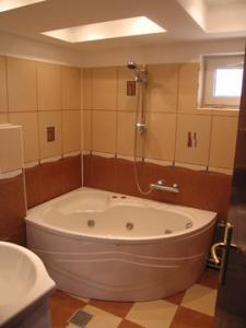 Executie intretinere instalatii sanitare