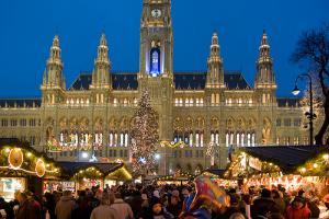 Piata de Craciun Viena 2013 - Hotel 4* / Mic dejun inclus