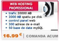 Pachet web hosting