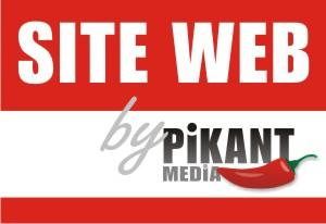 Siteul web