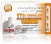 Extract purificat de rasina mumie 0.2gr *60cps