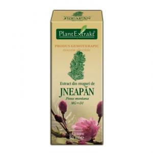 Extract din Muguri de Jneapan *50 ml