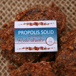Propolis Solid *30 gr