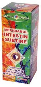 Tinctura Meridian Intestin Subtire 100ml