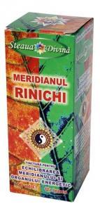 Tinctura Meridian Rinichi 100ml