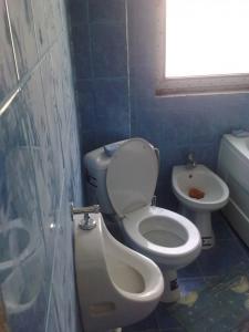 Bazin pt wc